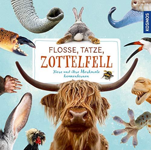 Flosse, Tatze, Zottelfell: Tiere und ihre Merkmale kennenlernen