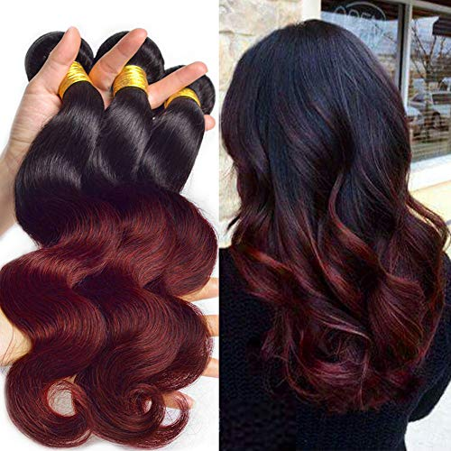 Black Rose Hair Ombre Bundles Black +Burgundy Two Tone 3 Bundles Brazilian Virgin 100% Human Hair 1B/99J Ombre Hair Weave 100G Thick Dark Root Hair Weft Extensions (14 16 18)