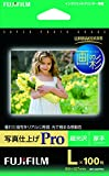画彩 写真仕上げPro WPL100PRO L判 1箱(100枚)