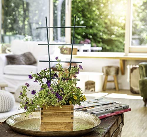 Windhager Blumenstütze Rankhilfe Gitterspalier Rankgitter, Kunststoff, gerade, Grün, 43 x 23 cm - 3