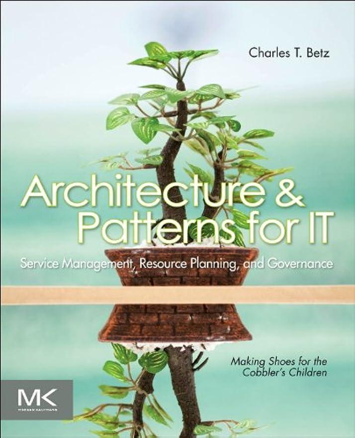 構造的バスArchitecture and Patterns for IT Service Management, Resource Planning, and Governance, Second Edition: Making Shoes for the Cobbler's Children