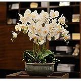Artificiale piantina Finta con Vaso Fiori artificiali dell'orchidea con vaso Grande pianta finta con pentola Phalaenopsis Bonsai per soggiorno Centerpieces Disposizioni Decorazione Artificiali Bonsai