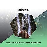 Música Internacional Tranquilizante del Patio Trasero
