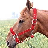 Cuque Regalo di Luglio Capezza per Cavallo Regolabile, Briglia per Il Controllo del Cavallo, Design con Fibbia PP Spessore 6 mm Rosso per Equitazione per Cavallo Capezza per Cavalli