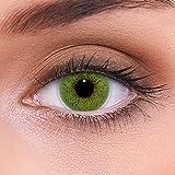 LENZOTICA Sehr stark natürlich deckende grüne Kontaktlinsen farbig SOLID GREEN + Behälter von LENZOTICA I 1 Paar (2 Stück) I DIA 14.00 I ohne Stärke I 0.00 Dioptrien -