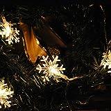 LightsGo Christmas Indoor Lights