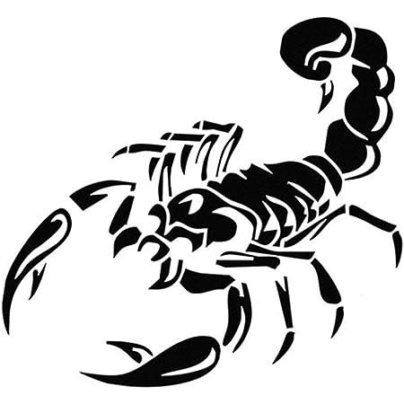 Hifuture 3d Auto Aufkleber Skorpion Muster Coole Auto Aufkleber Paste Dekoration Ornament 30cm Nette 3d Skorpion Auto Aufkleber Auto Styling Vinyl Aufkleber Aufkleber Für Autos Zubehör Dekoration Küche Haushalt