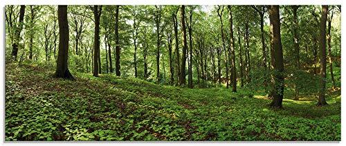 Artland Glasbilder Wandbild Glas Bild einteilig 125x50 cm Querformat Natur Landschaft Wald Bäume Pflanzen Sommer Landhaus S6EB