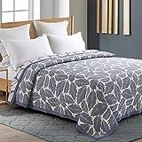 Qucover Tagesdecke 200 x 220 cm Baumwolle beideseitige Gesteppte Decke für Sommer weiche Wohndecke Kuscheldecke Sofaüberwurf Bettüberwurf für Doppelbett Hellblau Elegant Feder Muster