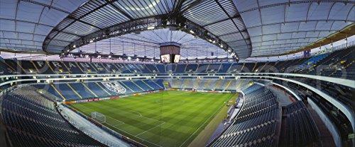 Frankfurt Stadion Panorama 2016 - Poster 120 x 50 cm - hochwertiger FineArtPrint