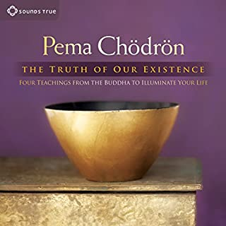 The Truth of Our Existence audiobook cover art
