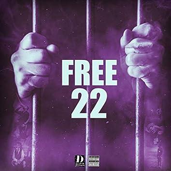 Free 22