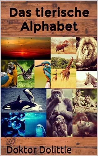 Best zoos der welt Vergleich in Preis Leistung