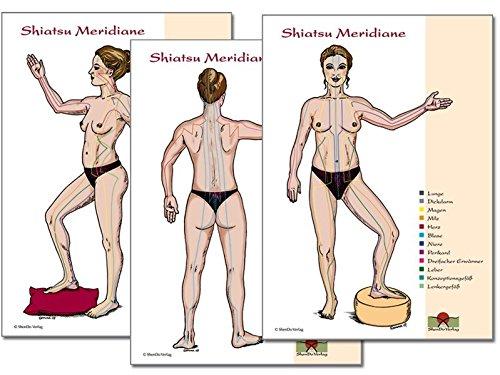 Meridiane: Shiatsu Meridiane DIN A3, 3 Schaubilder in Seiten-, Rücken- und Vorderansicht für den Unterricht und die Praxis