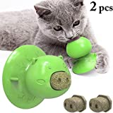 FANLIU 2ST Catnip-Ball-Katze lecke Spielzeug Saugnapf Katzen-Leckerli Chew Toy Mint Lecken Molares Spielzeug for Kätzchen Kitty Cat Zahnbürste Ausbildung Spielzeug (Color : Green)