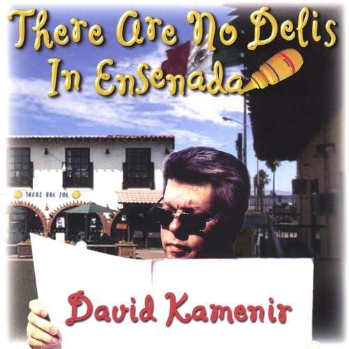 David Kamenir
