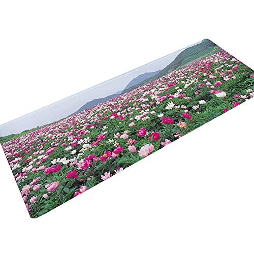 HLXX Alfombrillas Antideslizantes alfombras de baño alfombras de baño Cocina alfombras de Sala de Estar alfombras absorbentes Antideslizantes alfombras de Dormitorio A5 50x160cm
