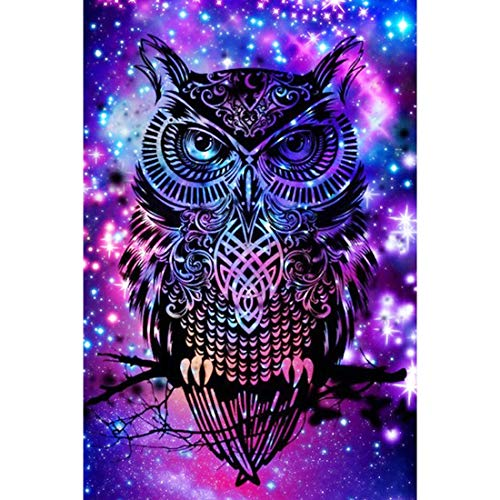 5D Diamond Painting Full Drill, 16'X12' Dream Owl DIY Diamond Painting by Number Kits, Rhinestone Crystal Drawing Gift for Adults Kids, 40x30cm Mosaic Making Art Painting for Wall Decoration