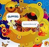Songtexte von Quantic - Apricot Morning