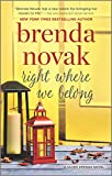 Right Where We Belong (Silver Springs Book 4)