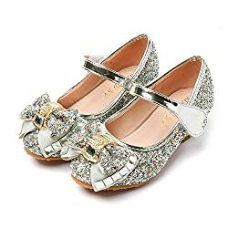 Princess Cosplay Sequin Low Heeled Silver-2 Shoe