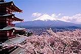 Juego de puzles premium 1000 piezas de madera Jigsaw Puzzle Games Mount Fuji Cherry Blossoms patrón rompecabezas de piso juguetes hogar foto marco decoración de la pared regalos