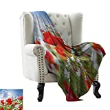 "LsWOW Flannel Fleece Blanket Country,Idyllic Spring Meadow with Poppy and Daisy Flowers Sunny Sky Clouds Garden Design,Multicolor Blanket for Sofa Couch TV Bed All Season 70""x90"""
