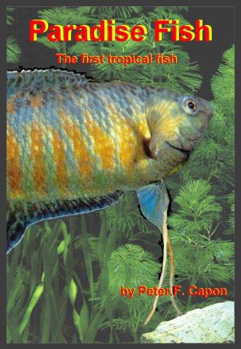 Paradise Fish (English Edition)