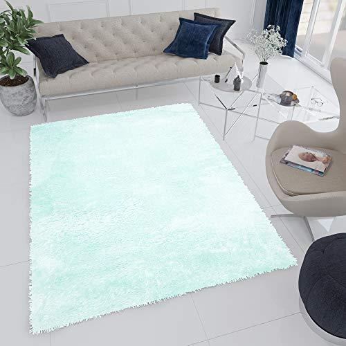 Tapiso Bird Teppich Shaggy Hochflor Langflor Mint Einfarbig Weich Modern Design Wohnzimmer Schlafzimmer ÖKOTEX 160 x 220 cm
