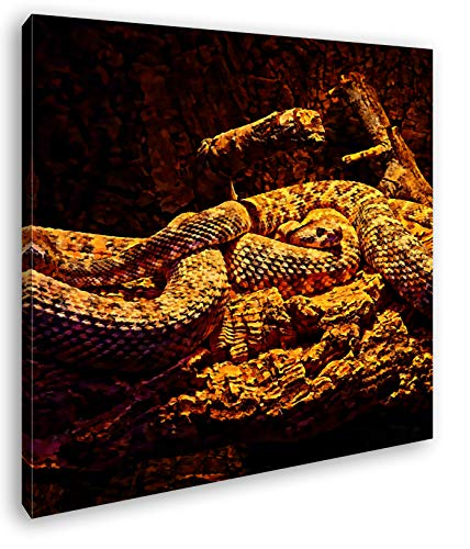 deyoli Zwei Klapperschlangen im Terrarium Format: 40x40 Effekt: Zeichnung als Leinwandbild, Motiv fertig gerahmt auf Echtholzrahmen, Hochwertiger Digitaldruck mit Rahmen, Kein Poster oder Plakat