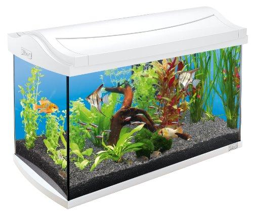 Tetra AquaArt Discovery Line Aquarium Komplett-Set