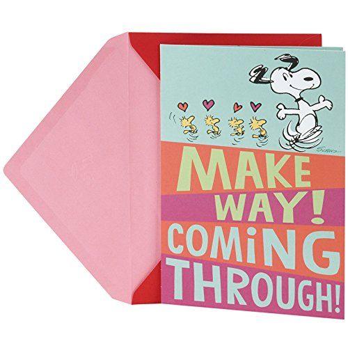 Hallmark Peanuts Valentine's Day Pop Up Card (Snoopy and Woodstocks)