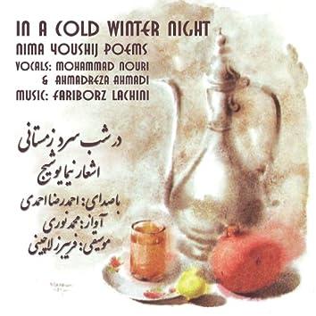 In a Cold Winter Night (Dar Shabe Sarde Zemestani): Nima Youshij Poems