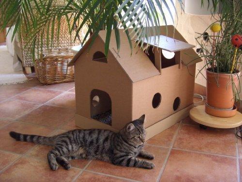 arteco-4pfoten.de -  Katzenhaus aus