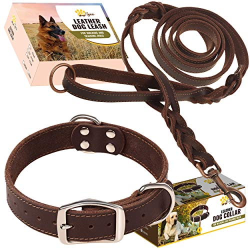 Leather Dog Collar and Leash Set - Double Handle Dog Leash 6 ft x 3/4' and Heavy Duty Wide Dog Collar for Medium Dogs