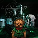 Urhause Weihnachtsgrünes Haar Monster Stofftier,Reborn Baby Puppe Wiedergeborene Babypuppe Realistische grüne Haare AFFE Geek Cartoon Puppe Weihnachten Wohnkultur passen für Kind Erwachsene