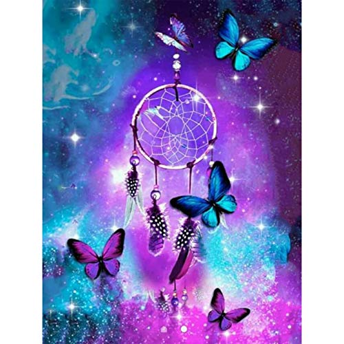 Diymood Painting Acrylic Paint by Number Kits for Students Beginner, DIY Starry Sky, Butterfly, Dream Catcher Oil Painting Drawing Wall Home Decor 40x50cm