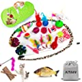 29 PCS Cat Toys Kitten Toys Assortments, Variety Catnip Toy Set Including 2 Way Tunnel,Cat Feather Teaser,Catnip Fish,Mice,Colorful Balls and Bells for Cat,Puppy,Kitty by AILUKI