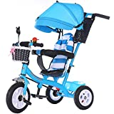 Byrhgood 多機能子供の3輪車、自転車、1-3-5歳のベビーカート、3人のウィーラーについては乳幼児 (Color : C)