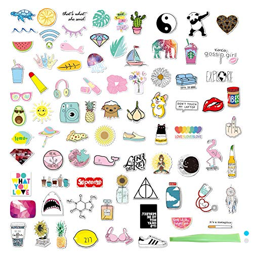 SwirlColor Vsco Stickers, Lindas Pegatinas 81 Formas Multicolor Pegatinas Impermeables Frescas para Botella Portátil Laptop Skateboard Maleta Teléfono, con 1pcs Raspador de Color Aleatorio