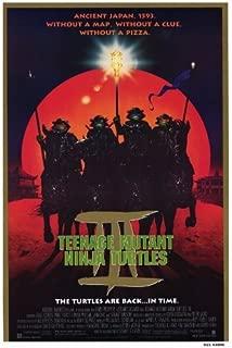 Teenage Mutant Ninja Turtles 3 Movie Poster (27 x 40 Inches - 69cm x 102cm) (1993) -(Elias Koteas)(Paige Turco)(Stuart Wilson)(Sab Shimono)(Vivian Wu) by MG Poster