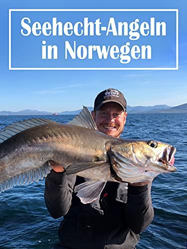 Seehecht-Angeln in Norwegen