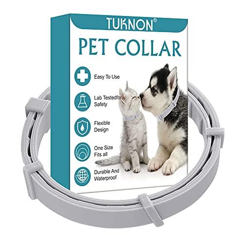 Collare Antipulci Gatto, Collare Antipulci Cane, Collare Antipulci e Zecche per Cani, Collare Antipulci per Cane e Gatto, Prevenzione Pulci e Zecche, Protezione Impermeabile e Regolabile