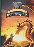 Die geheime Drachenschule - Der Drache mit den silbernen Hörnern: Band 2