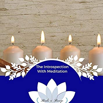 The Introspection With Meditation