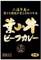 幻の牛肉 葉山牛カレー レトルトパウチ 2食入×4箱