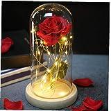 NaisiCore - Flores artificiales de seda roja, cúpula de cristal con luces LED, mano artificial eterna, rosa, romántico, decoración interior, regalo para el día de la madre, boda