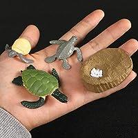 AATT シミュレーション動物の成長サイクル蝶、てんとう虫、鶏ライフサイクル置物プラスチックモデルアクションフィギュア教育子供のおもちゃ