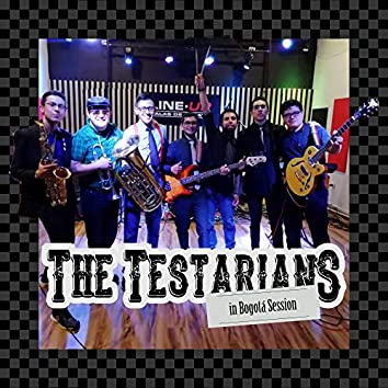 The Testarians in Bogotá Session