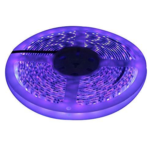 5M 3528SMD 300LED Impermeabile ultravioletta Luce UV LED striscia pesca notturna luce DC12V